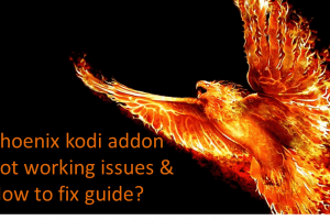 phoenix kodi not working