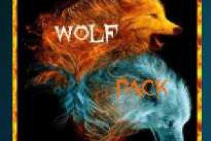wolfpack kodi addon
