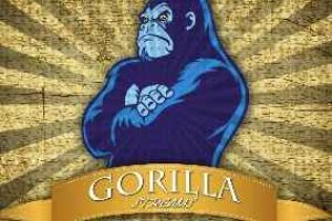 gorilla streams kodi addon