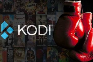 kodi fight